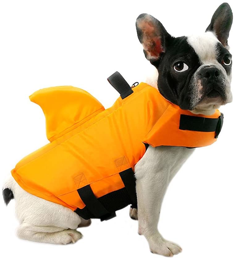 ropa-para-perro